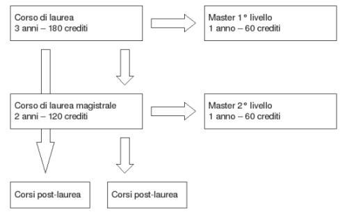Newly reformed Italian uni flow chart